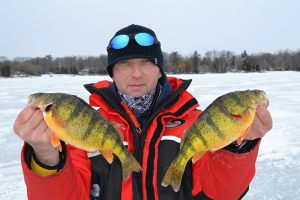 bbp-huge-perch-simcoe