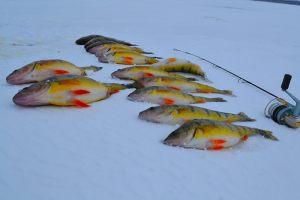 ice_fishing_mar_23_2013