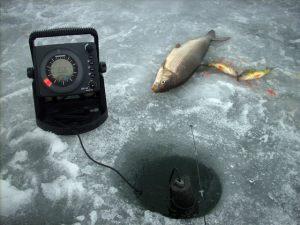 late-ice-withefish