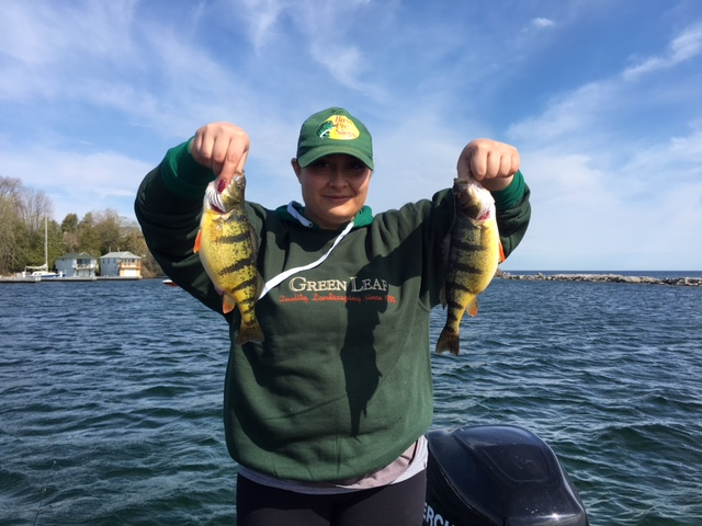 lake simcoe fishing report may 8 2016