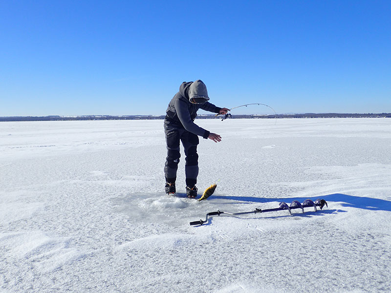 Cook 39 s bay keswick beach for Ice fishing report