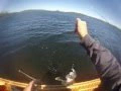Esnagami Walleye Fishing