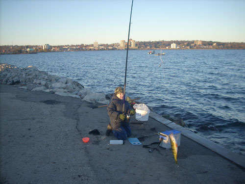 Shore fishing near barrie on lake simcoe for Lake simcoe fishing