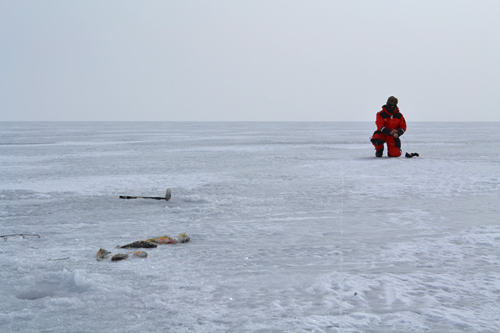 Lake simcoe fishing forum topic ice fishing for lake for Lake simcoe fishing