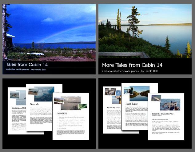 cabin_14_books.jpg